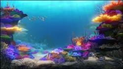 Mniam! / SeaFood (2011)  PL.1080p.BluRay.x264.AC3-PiratesZone Lektor PL