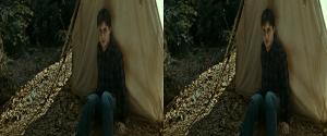 Harry Potter i Insygnia �mierci: Cz�� I 3D / Harry Potter and Deathly Hallows Part I (2010) 3D.Half.SBS.MULTi.1080p.BluRay.x264-ELiTE / DUBBiNG PL