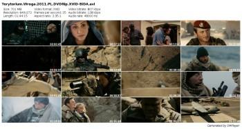 Terytorium wroga / Special Forces (2011)