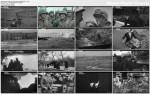 ¶wiat na wojnie / The World at War (1973-1974) PL.DVBRip.XviD / Lektor PL