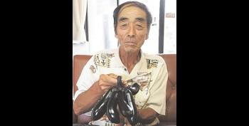 Terung Jepang