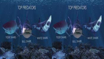 Oceans Predators 3D Half Sbs 2013 Belgesel indir