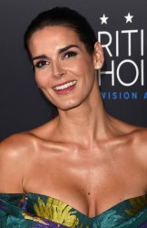 Angie Harmon - 5th Annual Critics' Choice Television Awards in Beverly Hills 5/31/15